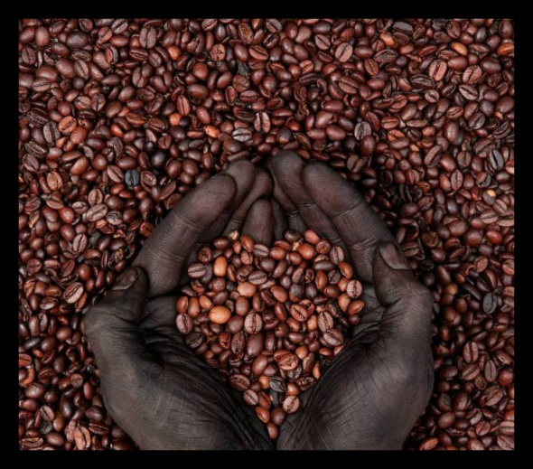 black_gold_coffee_ethiopia